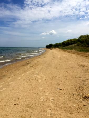 Caseville, MI: Beach along Saginaw Bay