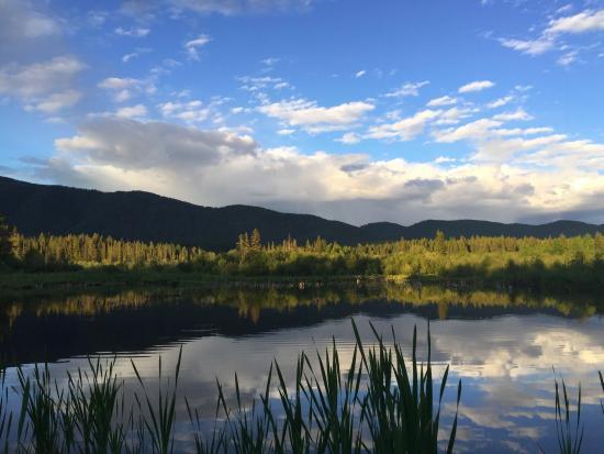 هستوريك تاماراك لودج آند كابنز: Beaver pond at the end of the trail behind the lodge
