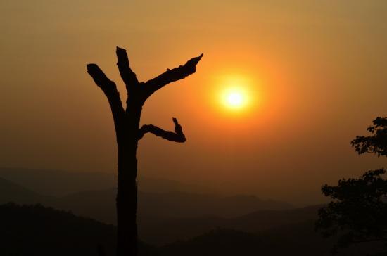 Magnolia Sunset Point
