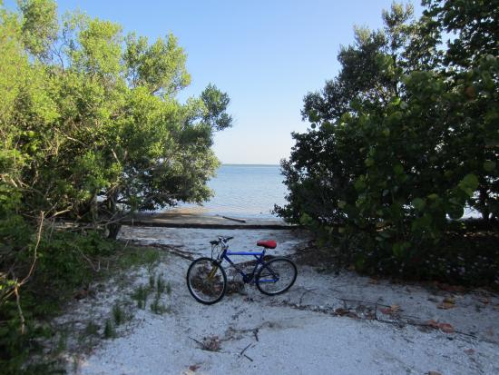 Bradenton, FL: Stop along the bike trail