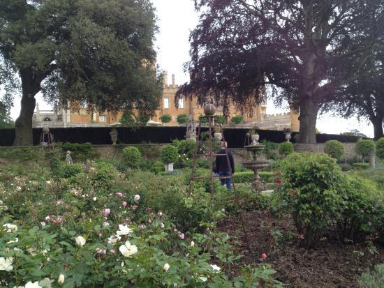 Belvoir Castle : Rose Gardens