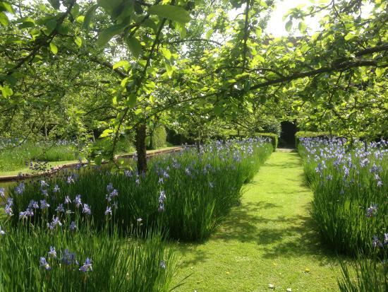 Bryan's Ground Garden