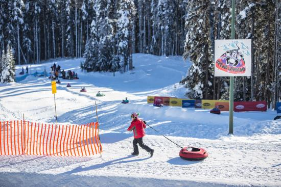 Manning Park Resort: Polar Coaster Tube Park