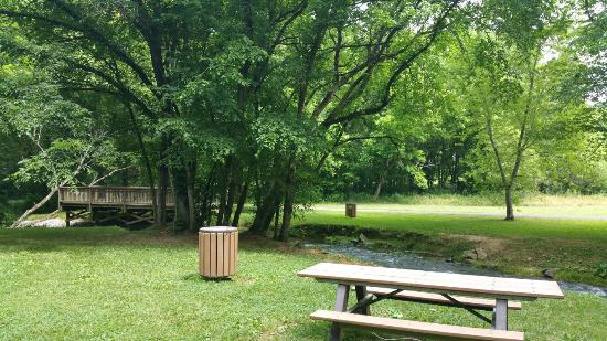 Dale Hollow Dam Campground