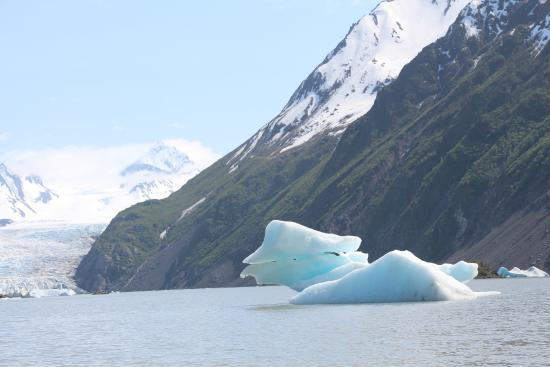 Kachemak Bay State Park: Grewingk Glacier