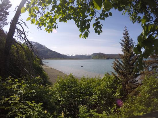 Kachemak Bay State Park: View from Saddle Trail