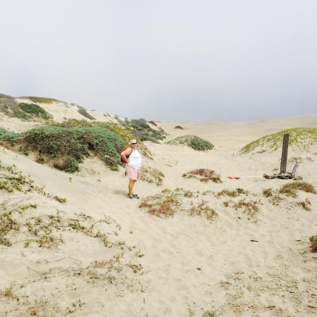 Kayak Shack: Sandspit Dunes