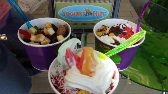 Yogurt Hut: An Island of Toppings in a Spunky Setting!