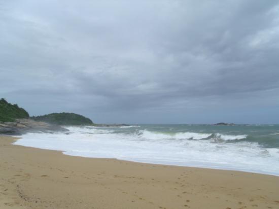 Virgem ou Costao Beach: Linda natureza, dá para ver a praia das pedras negras ao fundo. Maravilhosa!