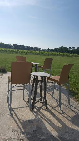 Hawk Haven Vineyard and Winery: Pick a spot... they provide the wine.