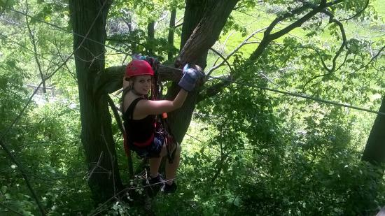 Zipline at Long Point Eco-Adventures