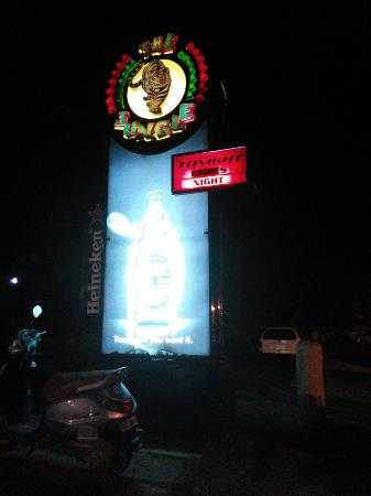 The Jungle Night Club, Sports Bar & Grill: IMG_20160603_031633_large.jpg