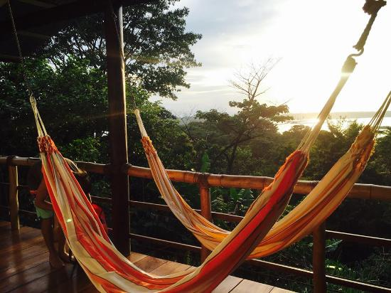 La Loma Jungle Lodge and Chocolate Farm: Sunset in the cabin