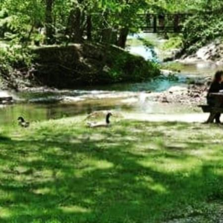 Blairsville, GA: Meeks Park