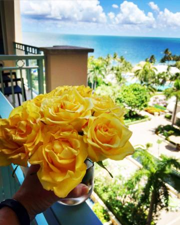 The Ritz-Carlton Key Biscayne, Miami: View from corner balcony room with my welcome flowers!