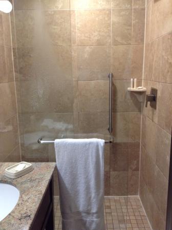 Hampton Inn Manhattan / Downtown - Financial District: Walk in shower