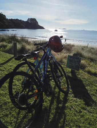 Isla Waiheke, Nueva Zelanda: IMG_20160603_145223_large.jpg