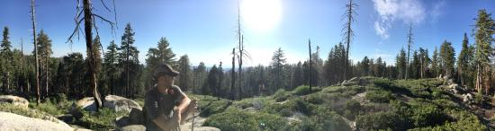 Three Rivers, CA: Sequoia National Park