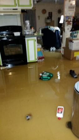 Quality Inn Bastrop: my kitchen before we got out...just so all know my statement is true...it is now non livable .