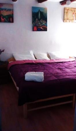 Jacaranda Inn Hostel: Double Room