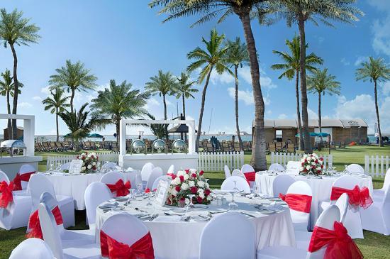 Ja Palm Tree Court Wedding Setup At Palmito Garden