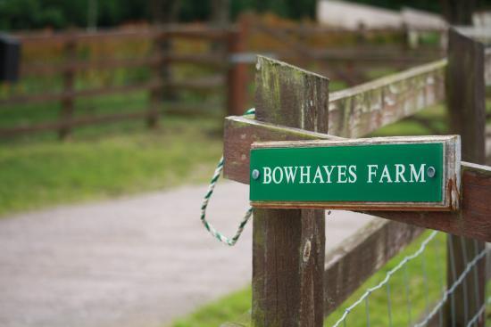 Culmstock, UK: Bowhayes Farm