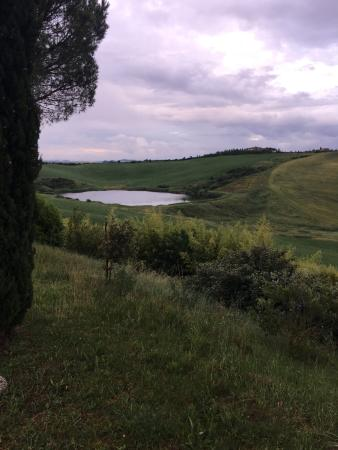 Isola d'Arbia, Italia: Podere Vesta