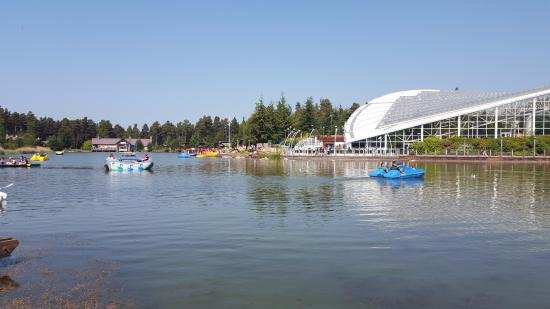 Centre Parcs Whinfell Forest