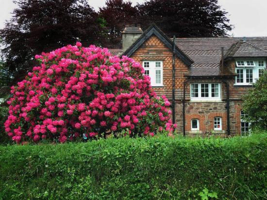 YHA Exford : Exford Hostel exterior