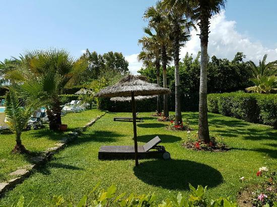 Cilento Resort Villaggio Velia: IMG-20160605-WA0020_large.jpg