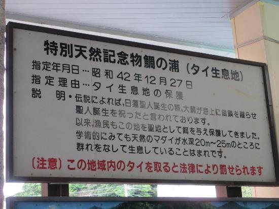 Tai-no-Ura Sightseeing Boat: 乗り場前看板