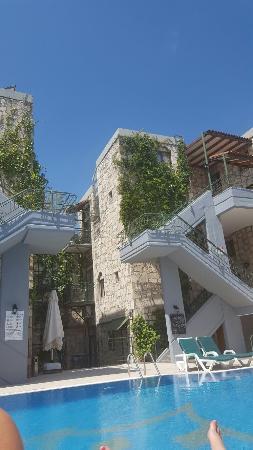 Green House Apart Hotel: 20160526_111851_large.jpg