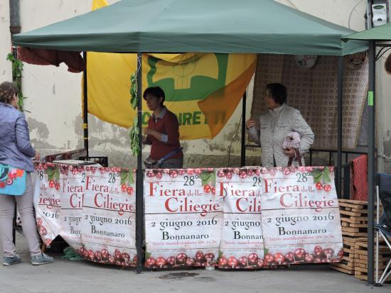 Bonnanaro, Italia: Sagra delle ciliege