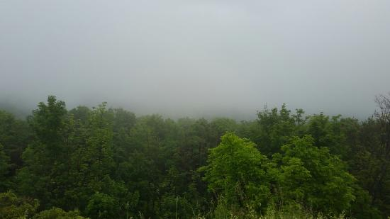 Five State Lookout: Rainy day look