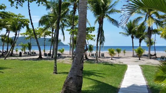 Tambor, Costa Rica: 20160524_133222_large.jpg