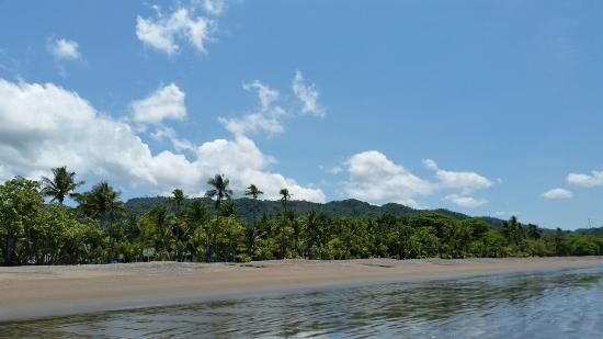 Tambor, Costa Rica: 20160524_132724_large.jpg