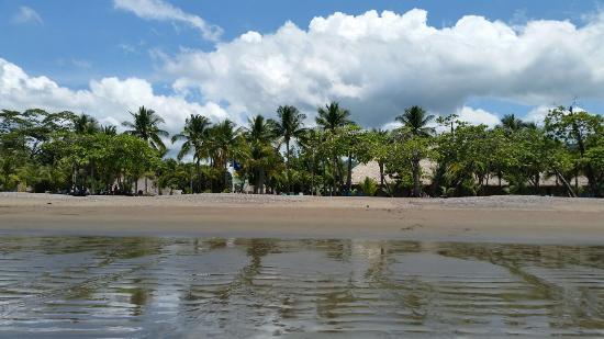 Tambor, Costa Rica: 20160524_132208_large.jpg