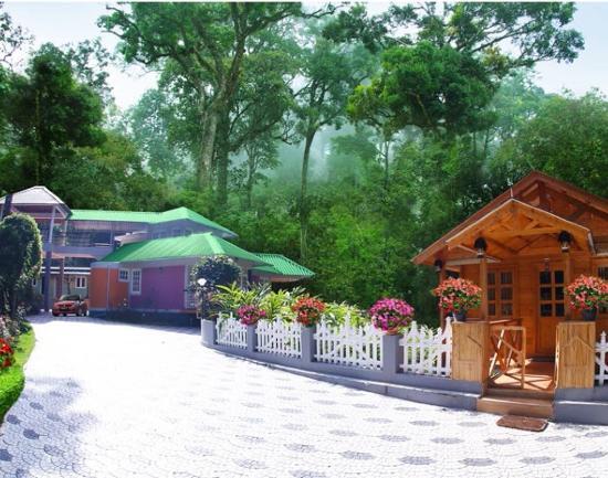 Rain Forest Homestay