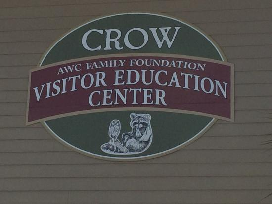 CROW Is The Only Licensed Sea Turtle Rehabilitation ...