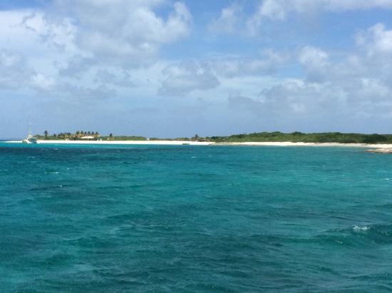 bahía de Simpson, Isla de San Martín: Prickley Pear