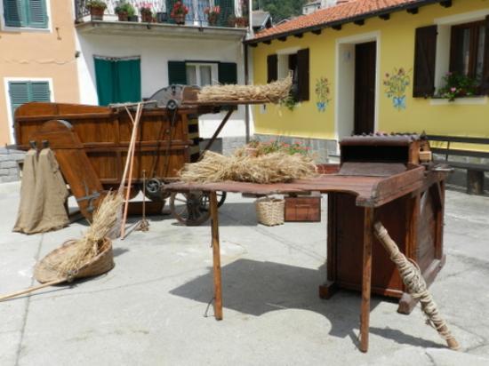 Cosio di Arroscia, Italy: Museo delle erbe di Cosio d'Arroscia