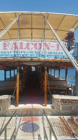 Falcon 1 Boat Tours