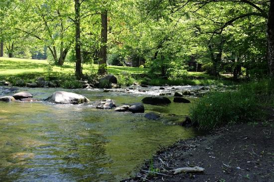 Swimming Hole Picture Of Greenbrier Campground