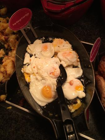 Toby Carvery: hard egg's
