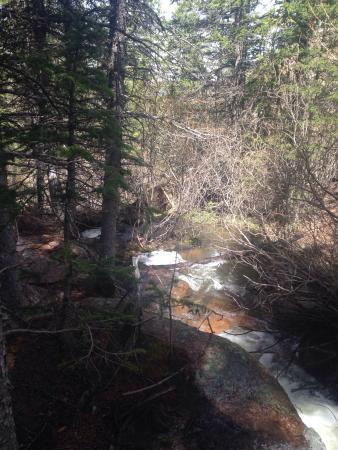 Divide, CO: Horsethief Falls