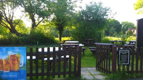 Surprisingly tranquil beer garden overlooking Ickenham Green