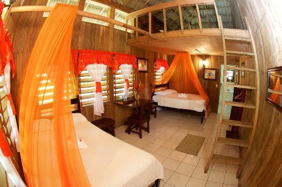La Milpa Field Station (Orange Walk, Belize) - voir les tarifs et ...