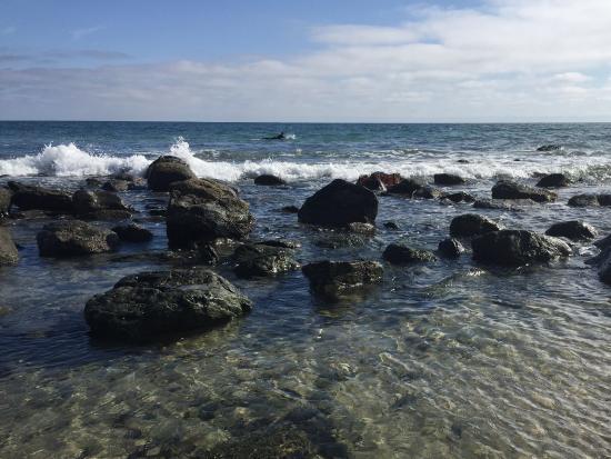 Dana Point, Californië: Tide pool area