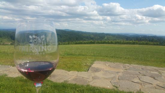 Yamhill, OR: delicious wines