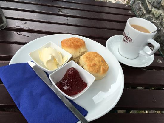 ‪‪Cadgwith‬, UK: Scones clotted Cream and Jam‬